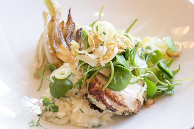 Gut essen in der Altstadt: Restaurant Borromäus im Hotel Schlüssel Luzern